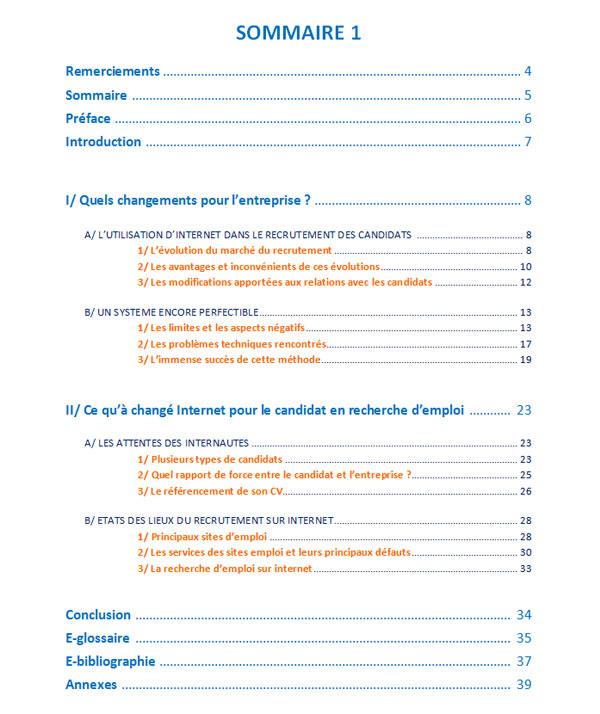 Exemple De Plan De Rapport De Stage Exemple 1 Rapport De